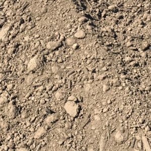 Type C Soil Canberra